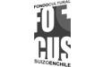 fondo-cultural-suizo-chile